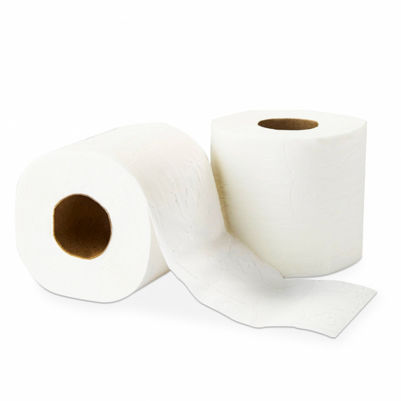 Papier toilette en rouleau Delcourt (96 rlx de 300 feuilles)