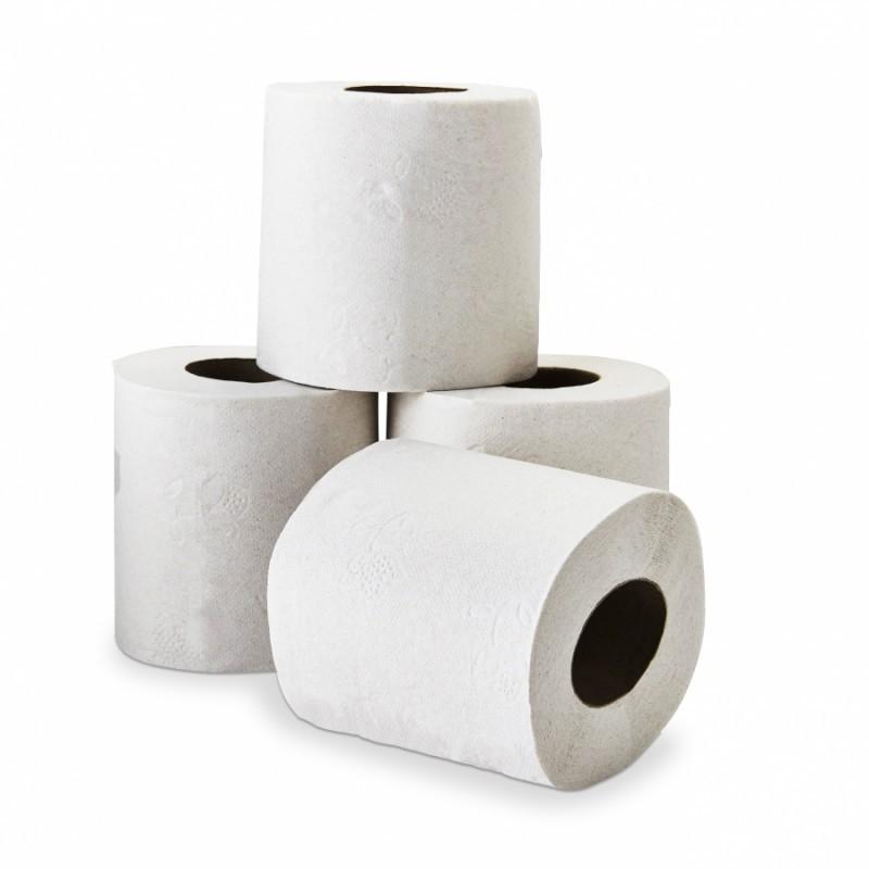 Rouleaux de papier toilette blancs DELCOURT 2 plis