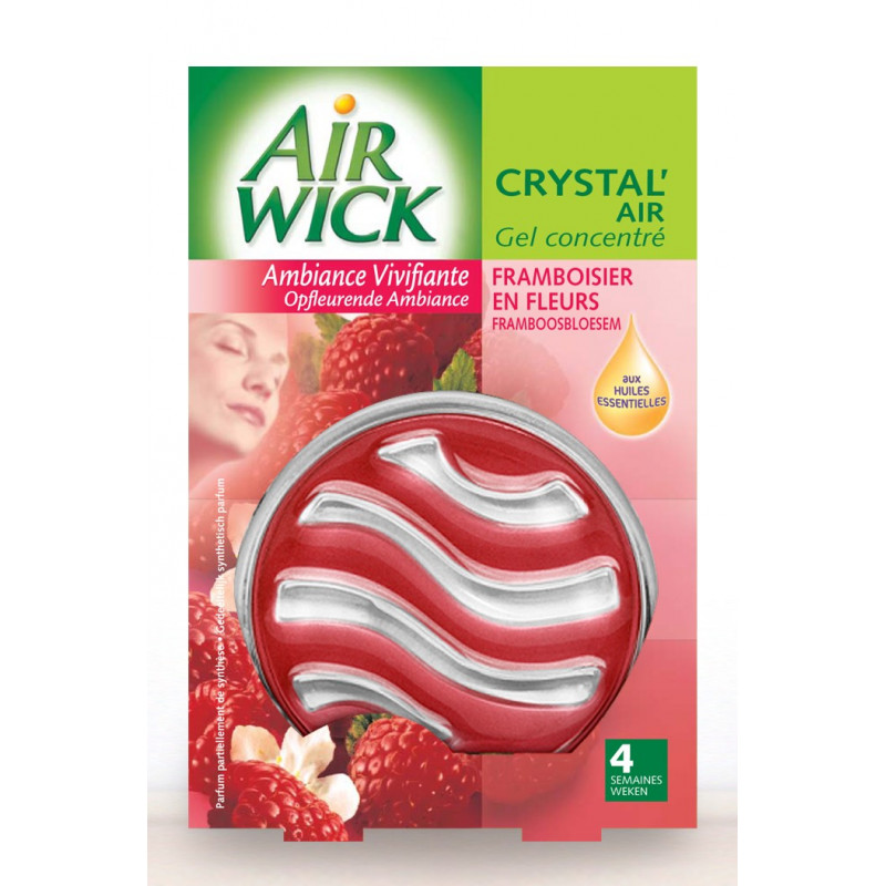 Gel désodorisant CRYSTAL'AIR WICK, par 2 sticks