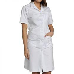 Blouses femmes coton manches courtes blanc