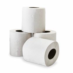 Papier toilette rouleaux blancs DELCOURT 2plis